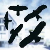 Ablakra ragasztható madár matrica készlet, 5 részes, 1 705 001