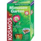 Mimóza kert kísérletező készlet, Kosmos