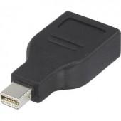 DisplayPort átalakító adapter, 1x mini DisplayPort dugó - 1x DisplayPort aljzat, aranyozott, fekete, Renkforce