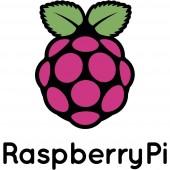 Raspberry Pi® RPI CM4 IO BOARD I/O-Shield Alkalmas: Raspberry Pi